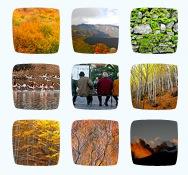Flickrpress sample
